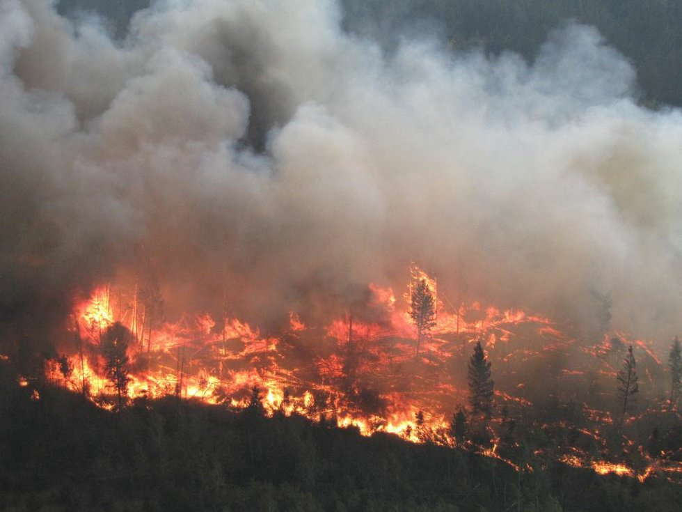 BC wildfires 2017 1.jpg