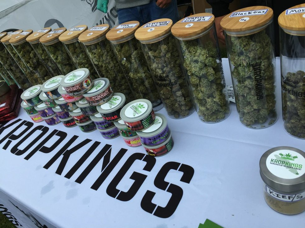 Indigenous Cannabis Cup 1.jpg