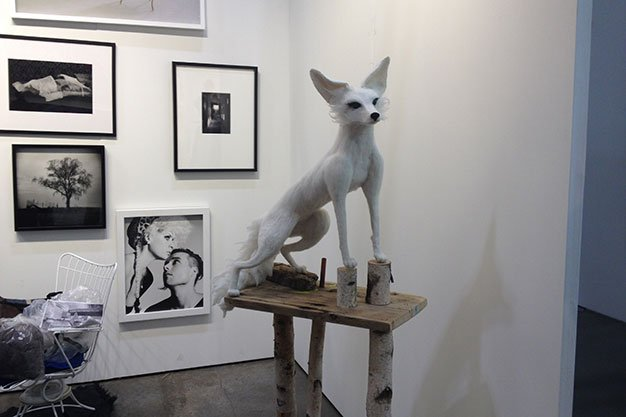 Marjorie-Campbell.-White-Fox.jpg