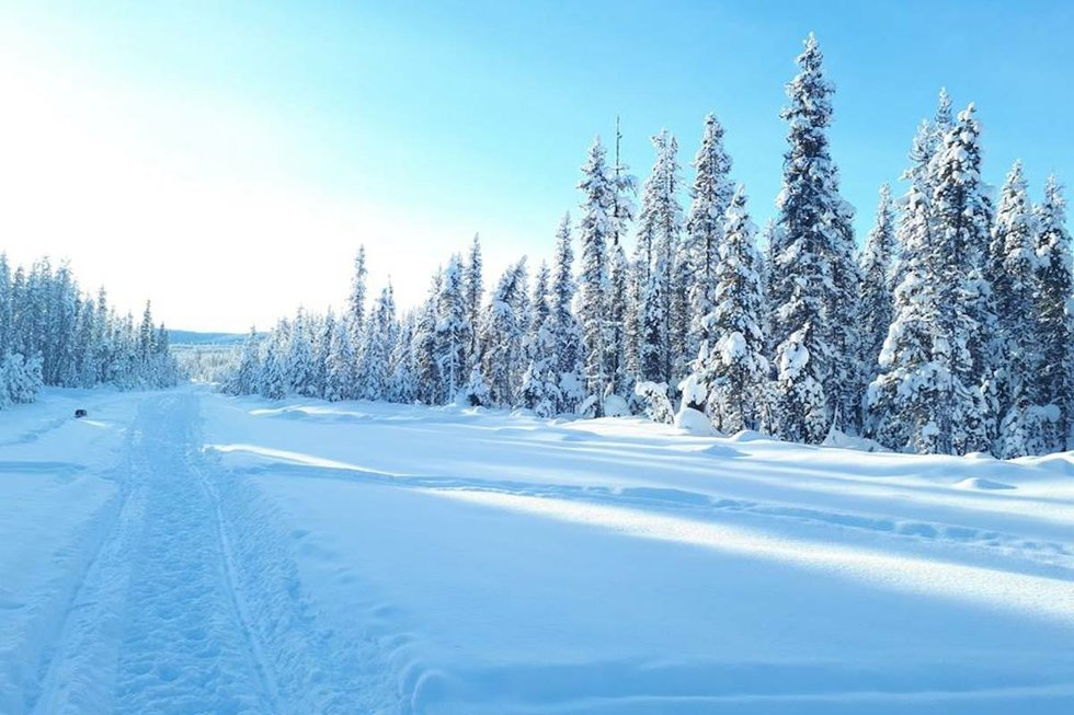 Area near Unistoten camp in northern BC.jpg
