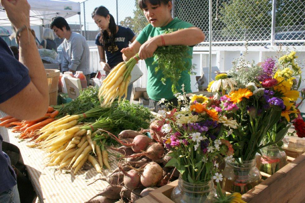 Dufferin Grove Organic Farmers' Market