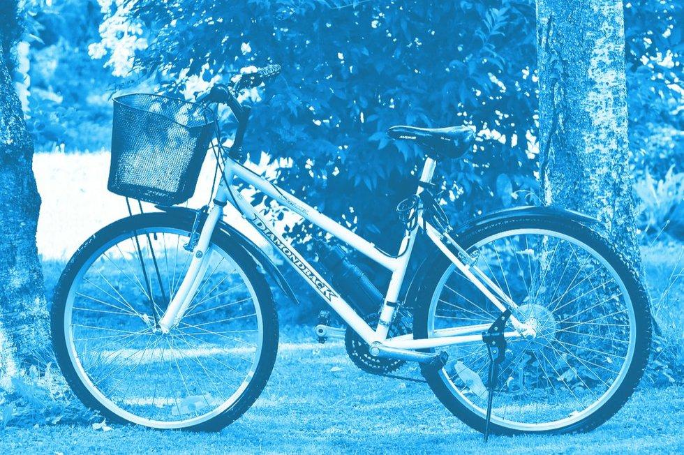 bike-1594071_1280.jpg