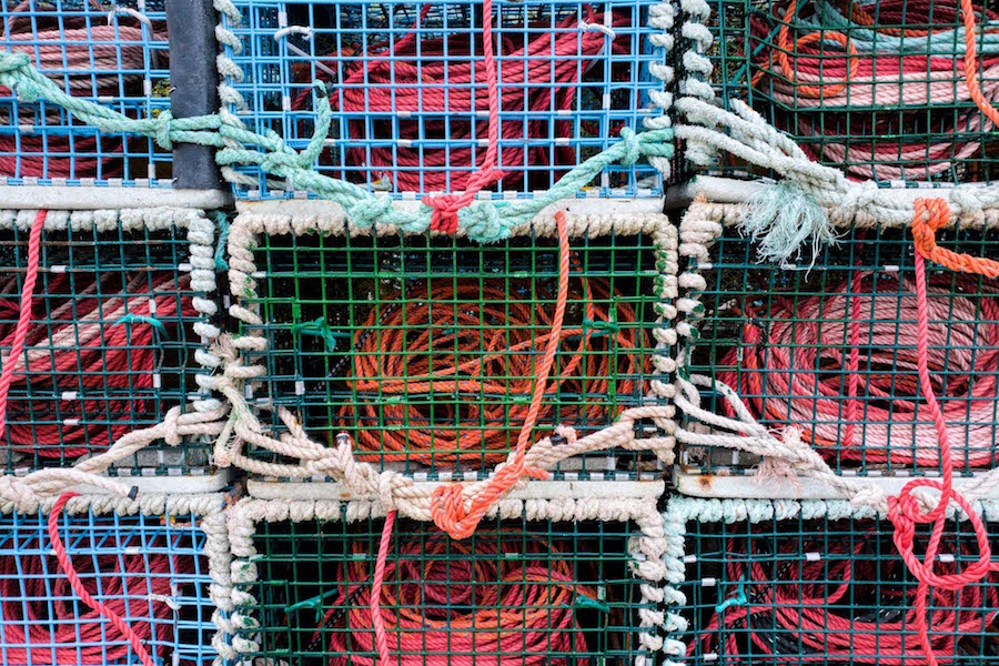 A close-up photo of lobster traps at a fishery in Canada