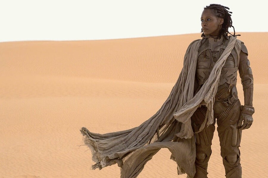 An image from Denis Villeneuve's Dune