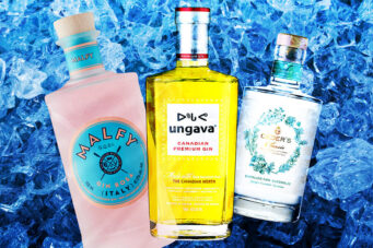 A photo of three gins to try in 2021
