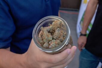 A hand holds an open jar of cannabis nugs
