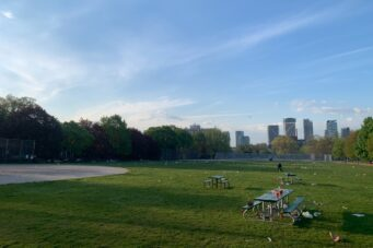 A photo of litter and garbage left across Trinity Bellwoods Park